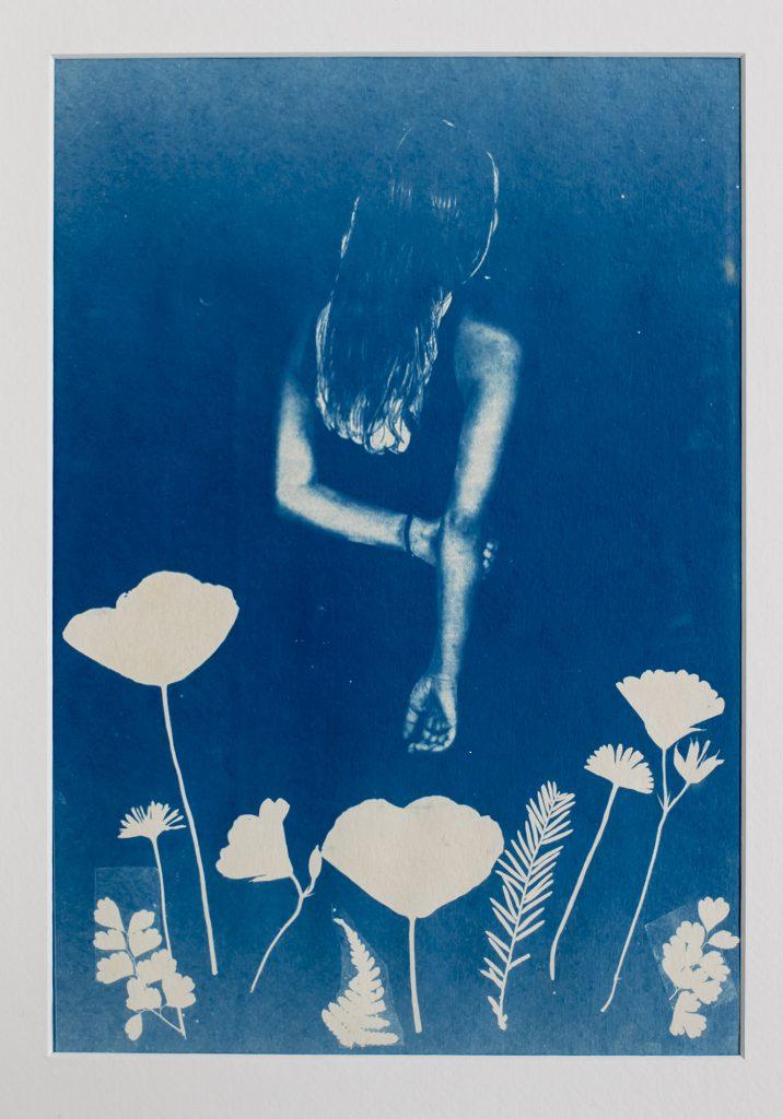 blauwdruk/cyanotype